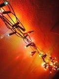 Lange en multi gekleurde lichte ketting Stock Fotografie