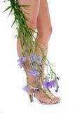Lange Fahrwerkbeine auf hohen Absätzen mit Blumen Stockfoto