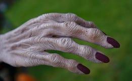 Lange Fingernägel in der roten Nagellackfarbe stockbilder