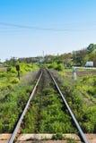 Lange gerade Schienen mit Vegetation stockbilder