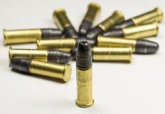 Lange geweer Rimfire Munitie Stock Fotografie
