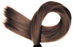 Lange gezonde rechte bruine haarpaardestaart op witte achtergrond stock afbeelding