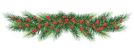 Lange Girlande von Weihnachtsbaumasten und von roten Beeren Vektor vektor abbildung