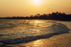 Lange golf, gouden zonsondergang op de oceaankust in de keerkringen Silhouet van palmen op de horizon Stock Foto