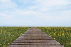 Lange hölzerne Brücke und schönes Sonnenlicht und Blume, selektive FO Lizenzfreie Stockbilder