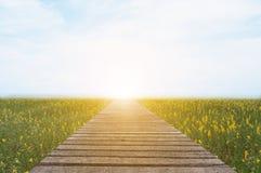 Lange hölzerne Brücke und schönes Sonnenlicht und Blume, selektive FO Stockbild