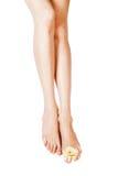 Lange hübsche Frauenfahrwerkbeine getrennt auf Weiß stockfotografie
