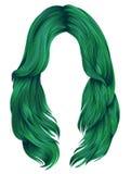 Lange Haarfarben der modischen Frau Schönheitsmode realistisch stock abbildung