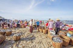 Lange Hai-vissenmarkt Stock Afbeeldingen