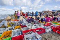 Lange Hai-vissenmarkt Stock Fotografie