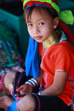 Lange halsstam in Thailand Royalty-vrije Stock Fotografie