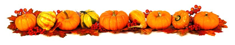 Lange Herbstgrenze Stockfoto