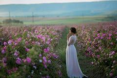 Lange huwelijkskleding, mooi kapsel en een gebied van bloemen royalty-vrije stock foto
