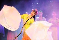 Lange kokers - de Opera van Peking Royalty-vrije Stock Foto's