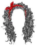 Lange krullende haren grijze kleuren De stijl van de schoonheidsmanier pruik Rode Boog royalty-vrije illustratie