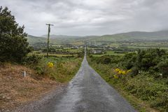 Lange ländliche Landstraße in der Republik Irland lizenzfreie stockfotografie