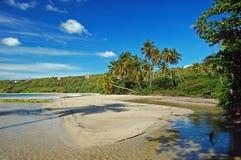 Lange palmen op het strand van La Sagesse Royalty-vrije Stock Afbeelding