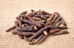 Lange peper of van de Pijper longum Royalty-vrije Stock Afbeeldingen