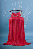 Lange rode kledings hoge stoel Royalty-vrije Stock Foto's