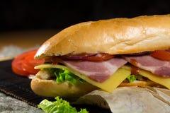 Lange sandwich met vlees, groenten en barbecuesaus Stock Afbeelding