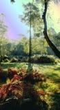 Lange schaduw artistieke versie 9 royalty-vrije stock afbeelding