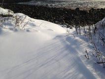 Lange schaduwen in de sneeuw stock afbeeldingen