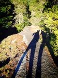 Lange Schattenbilder beim Wandern durch den Wald Stockfotos