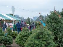 Lange Schlange von Käufern in der Linie am Weihnachtsbaummarkt während des Feiertags stockfotografie