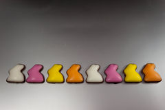 Lange Schlange von Osterhasen des Zuckers Lizenzfreies Stockbild