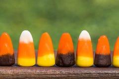 Lange Schlange von Süßigkeits-Mais Stockfotos