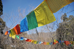 Lange schmale Markierungsfahne in Tibet Stockfotografie