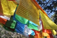 Lange schmale Markierungsfahne in Tibet Stockbild