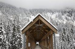 Lange Sneeuw Houten Behandelde Brug Washington Stock Fotografie