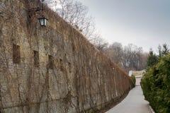 Lange steeg met bakstenen muren en lantaarns Kyiv ukraine stock afbeeldingen
