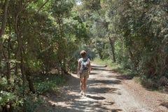 Lange Wanderung im Wald Stockbilder