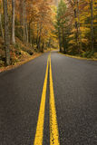 Lange Weg in Autumn Vertical Shot Stock Fotografie