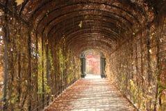Lange weg in de tuin royalty-vrije stock fotografie