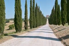 Lange weg die met cipressen wordt gevoerd Royalty-vrije Stock Foto
