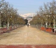 Lange Weg in het openbare park genoemd CAMPO MARZO in Vicenza Stock Afbeeldingen