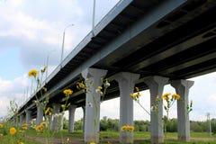 Lange wegbrug op de steunen van het viaduct stock foto