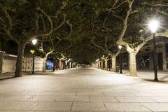 Lange Wegstraße zeichnete mit grünen Bäumen nachts in Spanien lizenzfreie stockbilder