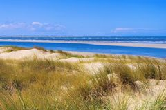 Langeoog Dune Royalty Free Stock Photography