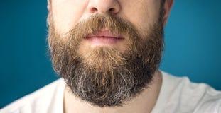 Langer Bart stockbilder