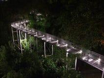 Langer beleuchteter Gehweg mit Bäumen Stockbild