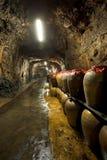 Langer Flur des Tunnel-88 Stockbilder