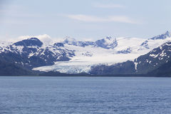 Langer Gletscher in Kenai-Fjord Stockfoto