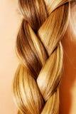 Langer Haarabschluß Browns oben Blonder langer Haarabschluß oben Stockbild