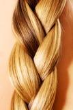 Langer Haarabschluß Browns oben Blonder langer Haarabschluß oben Lizenzfreies Stockbild