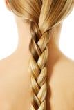 Langer Haarabschluß Browns oben Blonder langer Haarabschluß oben Lizenzfreies Stockfoto