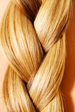 Langer Haarabschluß Browns oben Blonder langer Haarabschluß oben Lizenzfreie Stockbilder